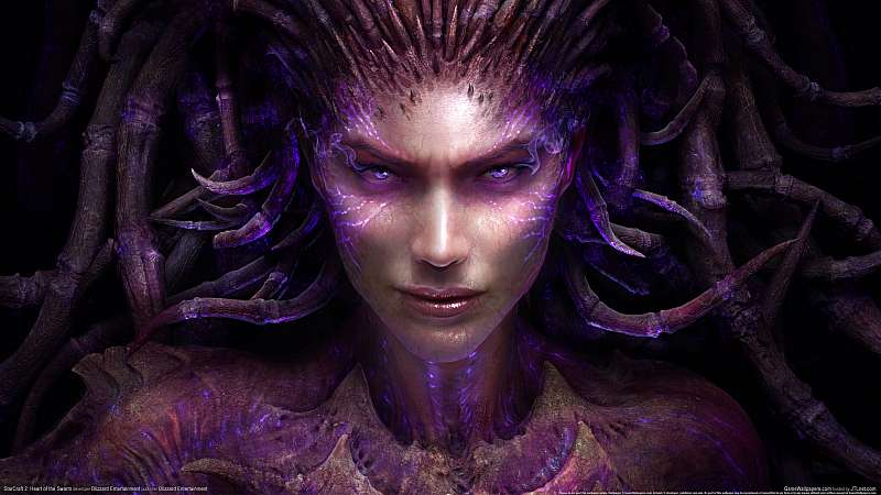 StarCraft 2: Heart of the Swarm fondo de escritorio
