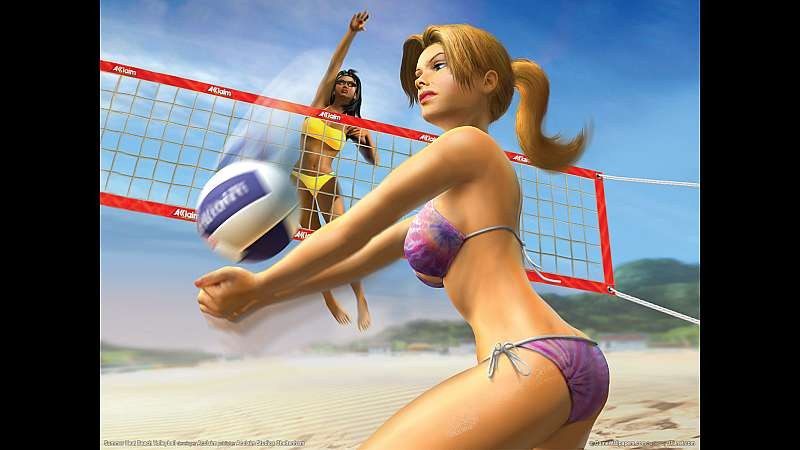 Summer Heat Beach Volleyball fondo de escritorio
