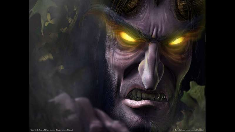 Warcraft 3: Reign of Chaos fondo de escritorio 03