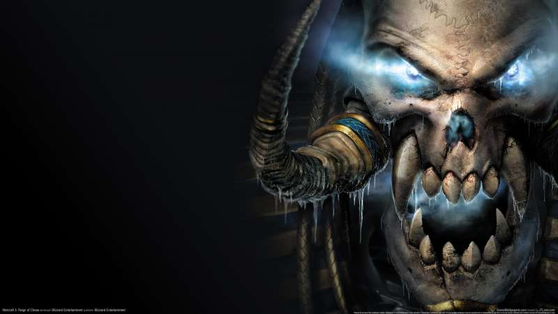 Warcraft 3: Reign of Chaos fondo de escritorio 20