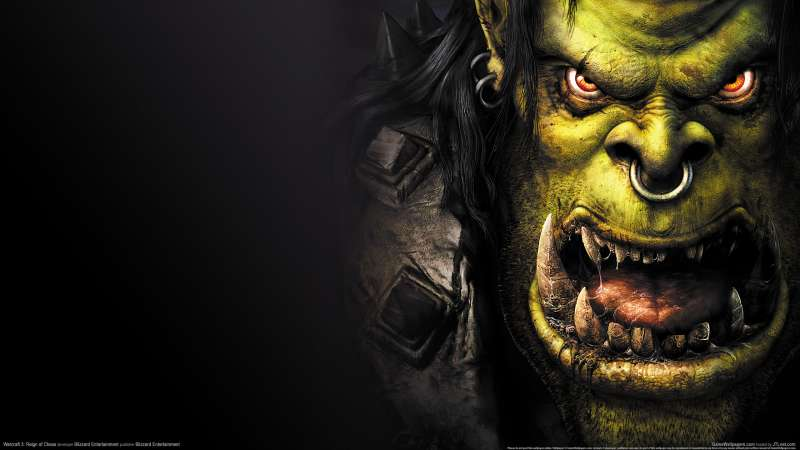 Warcraft 3: Reign of Chaos fondo de escritorio 21