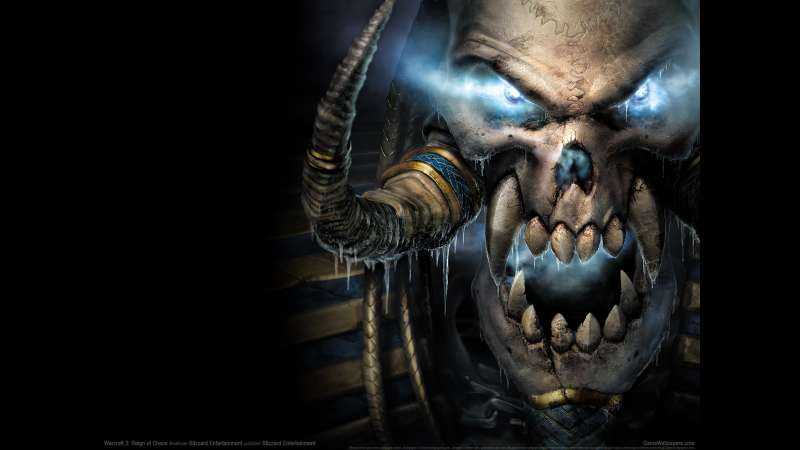 Warcraft 3: Reign of Chaos fondo de escritorio 26